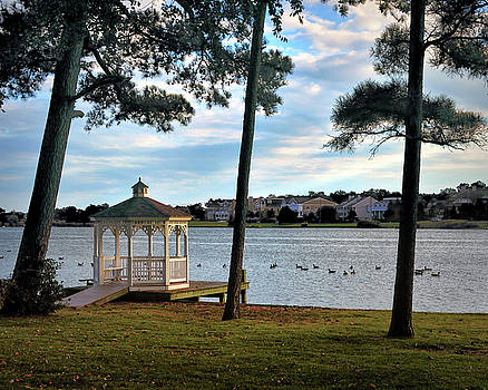 Silver Lake Serenity in Rehoboth Beach by Bill Swartwout