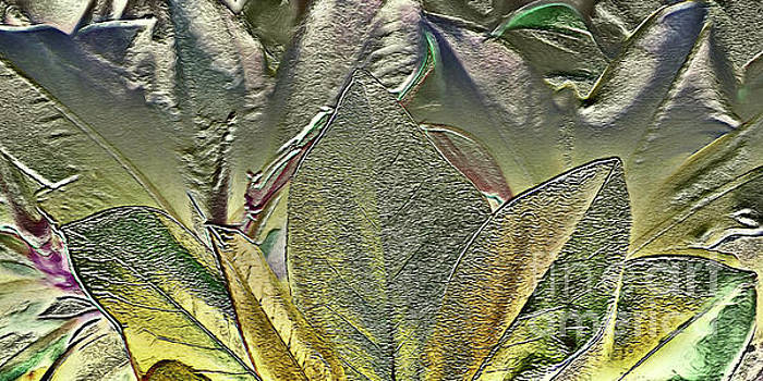 Silver Leaves Abstract  by Margaret Koc