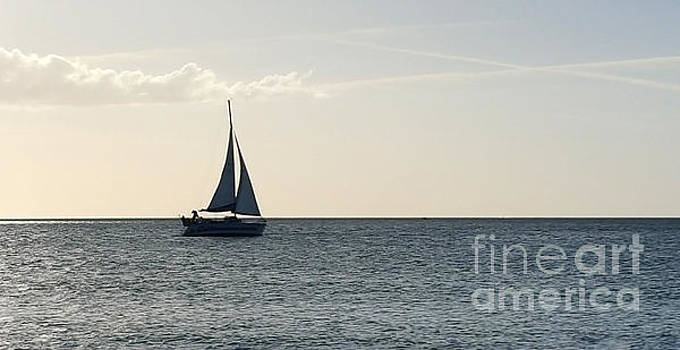 Silver Sailboat by Jeanne Forsythe