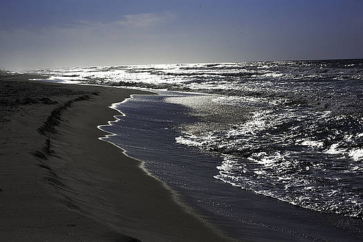 Silver Shore by Kelly E Schultz
