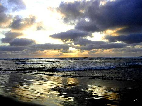 Silver Shores by Will Borden