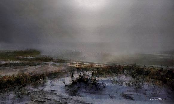 Silvered Shore by RC deWinter