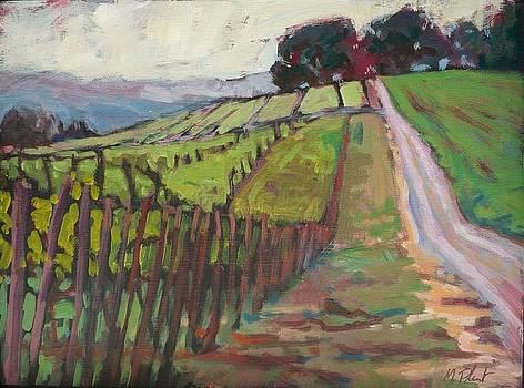 Silverton Hills 2 by Margaret  Plumb