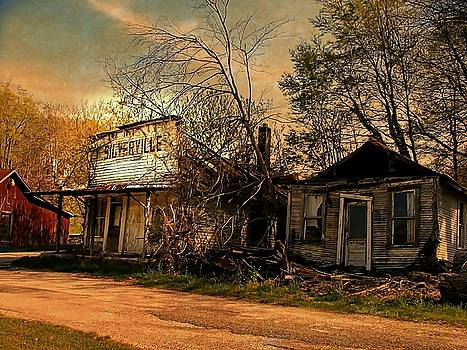 Silverville Ghost Town in Browns by Julie Dant