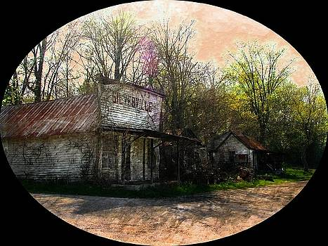 Silverville Ghost Town by Julie Dant