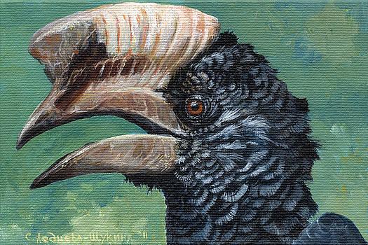 Silvery-cheeked hornbill by Svetlana Ledneva-Schukina