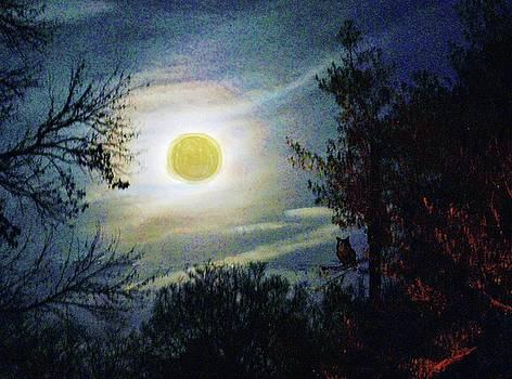 Silvery Moon Glow by Jeannie Allerton