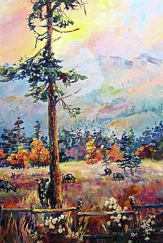 Similkameen Valley by Bonny Roberts