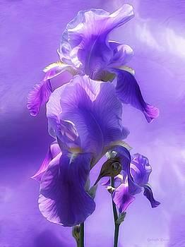 Simly Beautiful by Gabriella Weninger - David