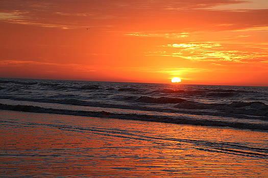 Rosanne Jordan - Simmering Sunset