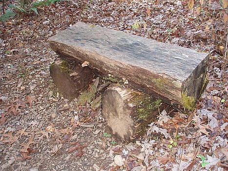 Allen Nice-Webb - Simple Bench