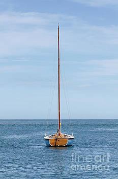 Simple sailboat  by Steev Stamford
