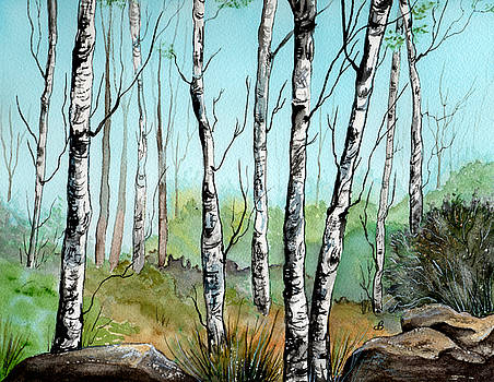 Simply Birches by Brenda Owen