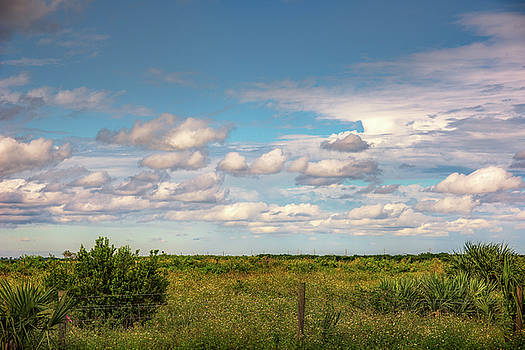Simply Clouds by Louise Hill