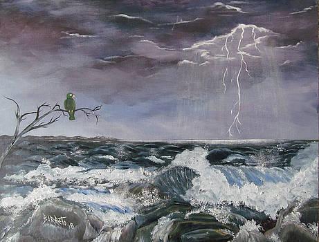 Sin Temor by Gloria E Barreto-Rodriguez