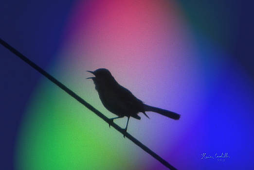Sing a song by Kevin Caudill