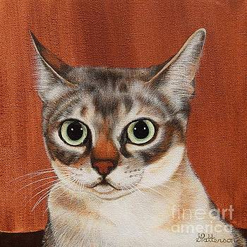 Singapura Cat by Sharon Patterson