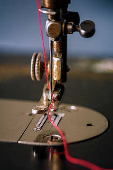Singer Sewing Machine Needle Detail by Eleanor Caputo