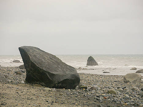 Singing Stones at Shore by Trance Blackman