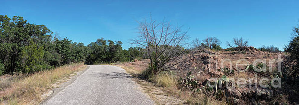 Single Lane Road in the Hill Country by PorqueNo Studios