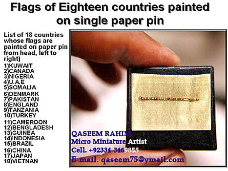 Single Paper Pin Painted on 18 Countries Flag's by Qaseem Ur- Rahim
