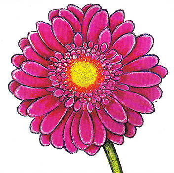 Richard Lee - Single Pink Gerbera