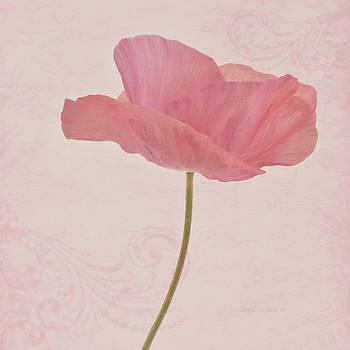 Sandra Foster - Single Pink Upright Poppy