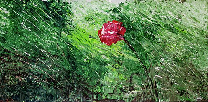 Single Poppy by Gaynell Parker
