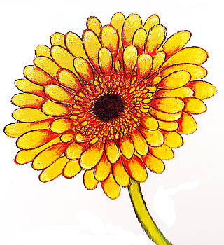 Richard Lee - Single Yellow Gerbera