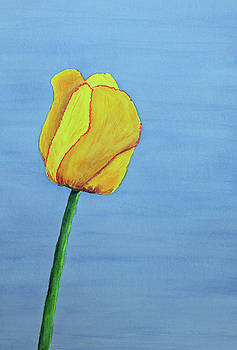 Single Yellow Tulip by Lisa Von Biela