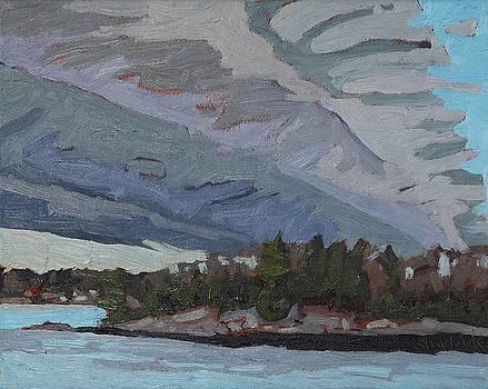 Singleton Rain Storm by Phil Chadwick