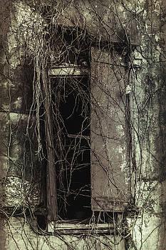 Andrew Wilson - Sinister Window