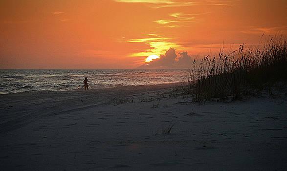 Sinking into the Horizon by Renee Hardison