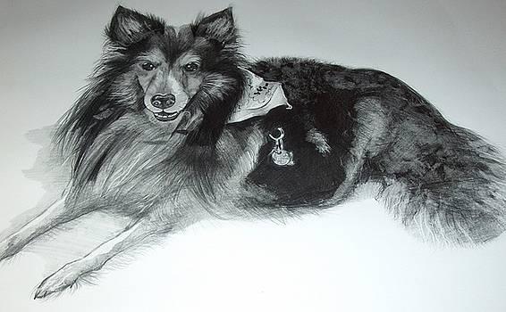 Sir Shubert Artist Choice by Judith Lorraine White