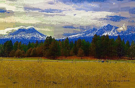 Sisters Cascade Range by Diane E Berry