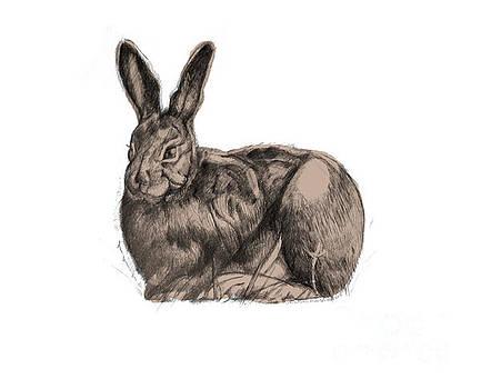 Sitting Bunny Jan 2017 by Donna Huntriss