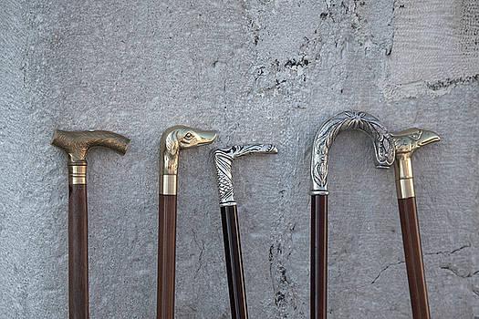 Siver And Bronze Walking Sticks by Matjaz Preseren