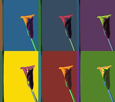 Stan  Magnan - Six Calla Lilies
