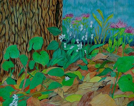 Six in hiding by Charla Van Vlack