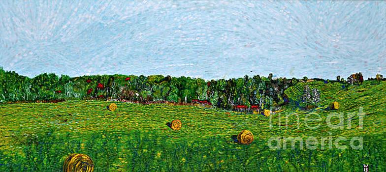 Six Rolls of Hay by Richard Wandell