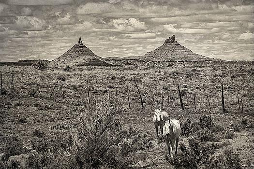 Six-Shooter Peaks by Lou  Novick