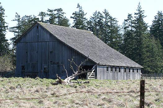 Skagit Barn SB5014 by Mary Gaines