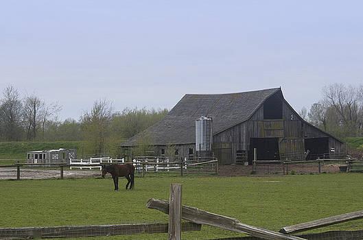 Skagit Barn SB5022 by Mary Gaines