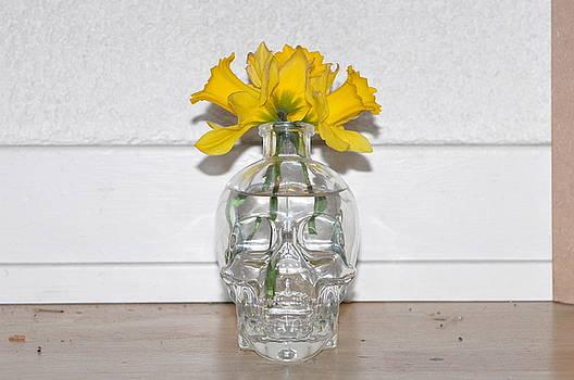Skeleton Brain by Dave Doumis