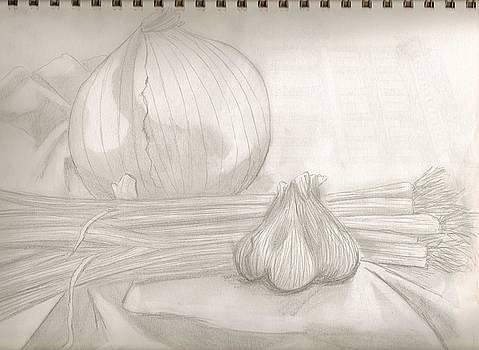 Sketchbook onions by Jeanette Lindblad