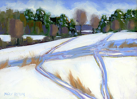 Ski Trails by Mary Byrom