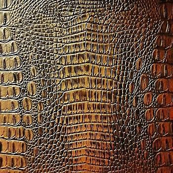 Skin by Kyler Barnes