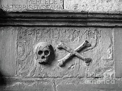Skull and Crossbones by Katrina Perekrestenko
