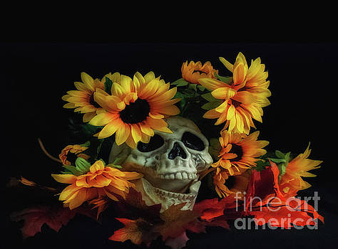 Skull and Flowers by Scott Hervieux