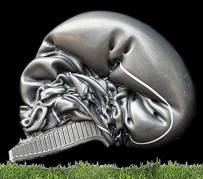 Skull and Grass by John Dahlsen